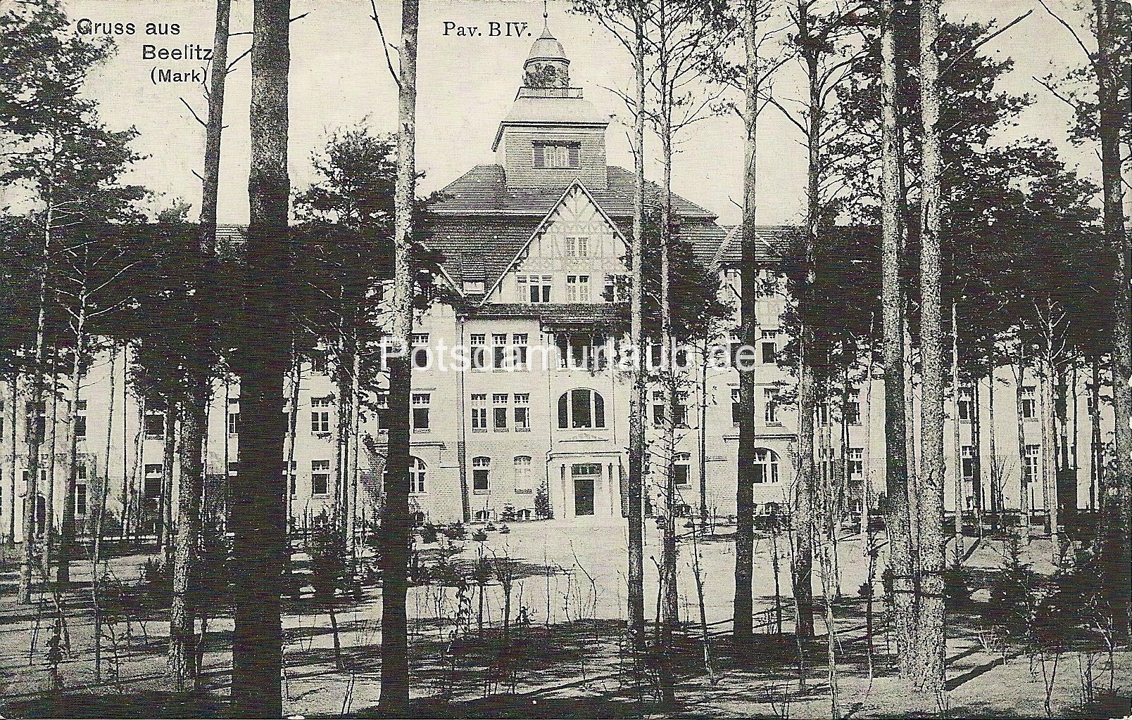 1909 03 20 v