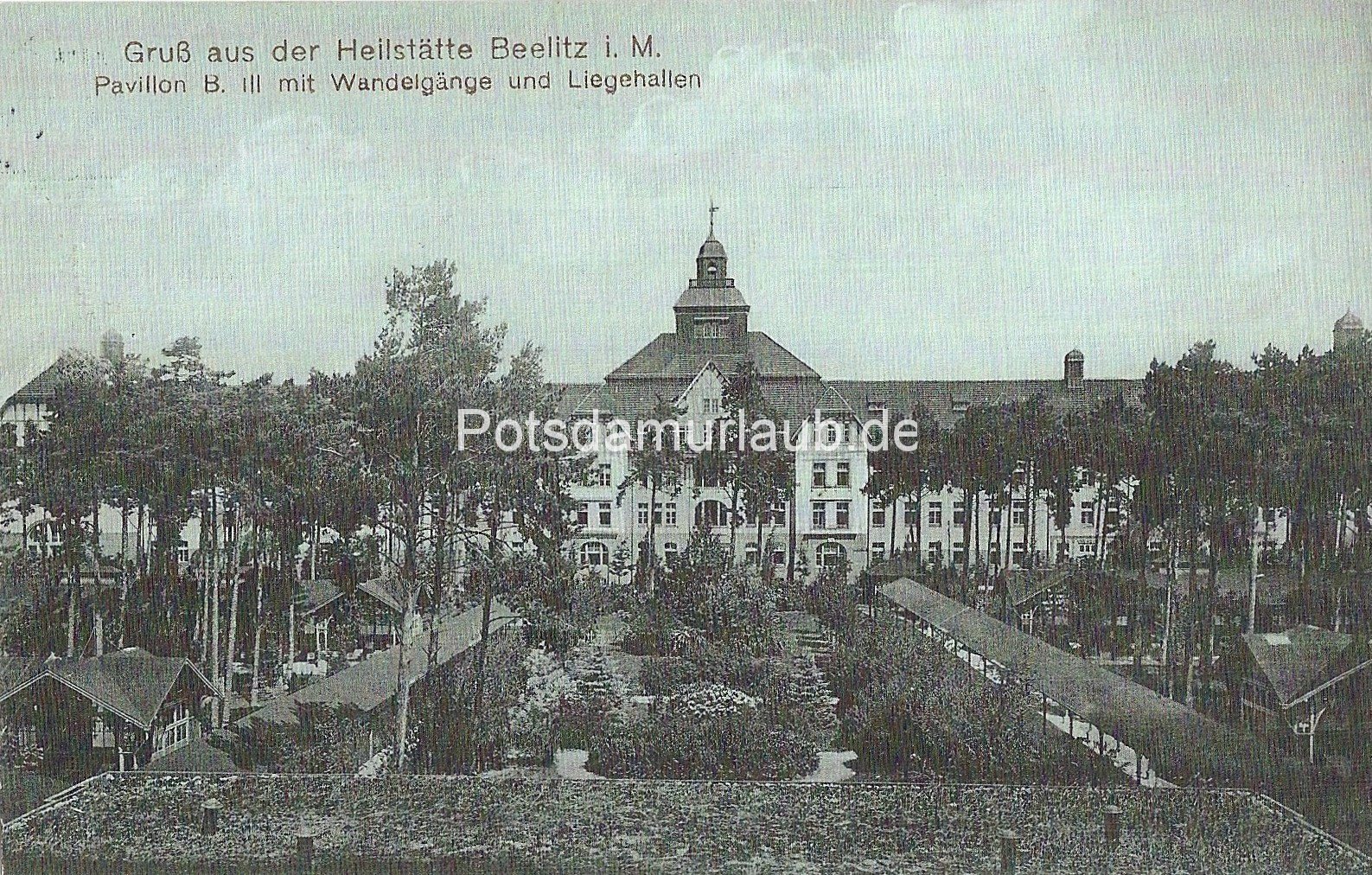1913 03 17 v